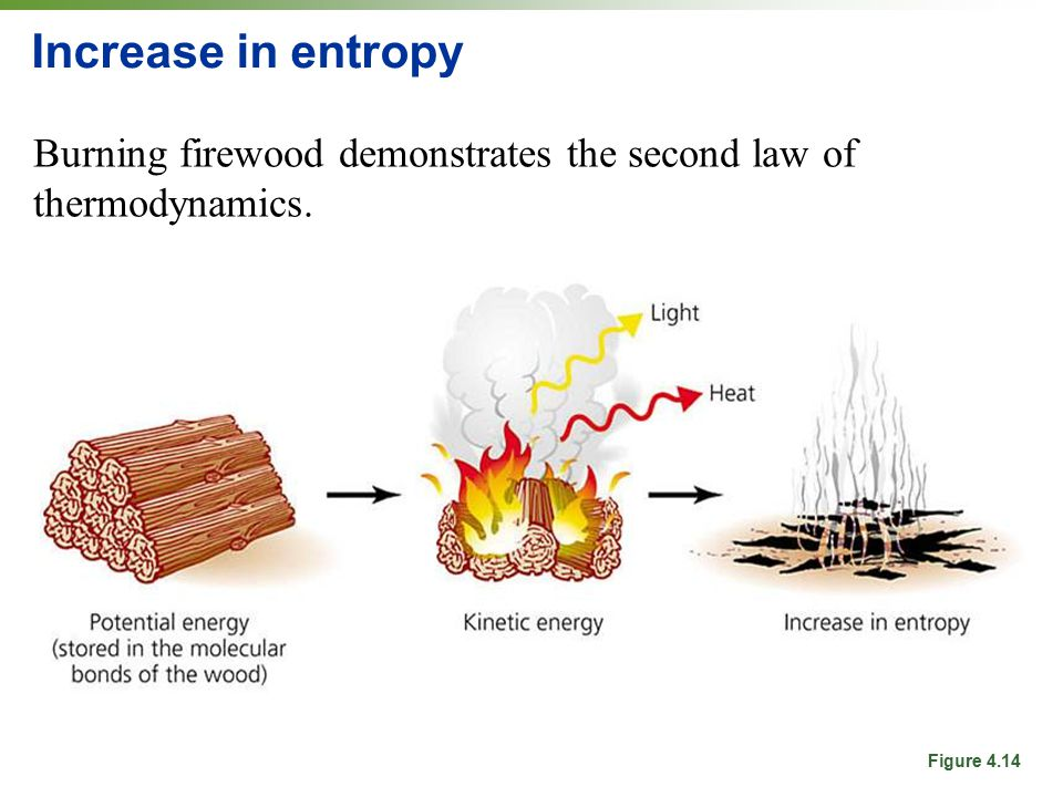 Increase in entropy Burning firewood demonstrates the second law of thermodynamics. Figure 4.14
