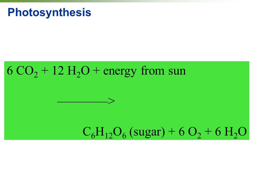 6 CO2 + 12 H2O + energy from sun ————>