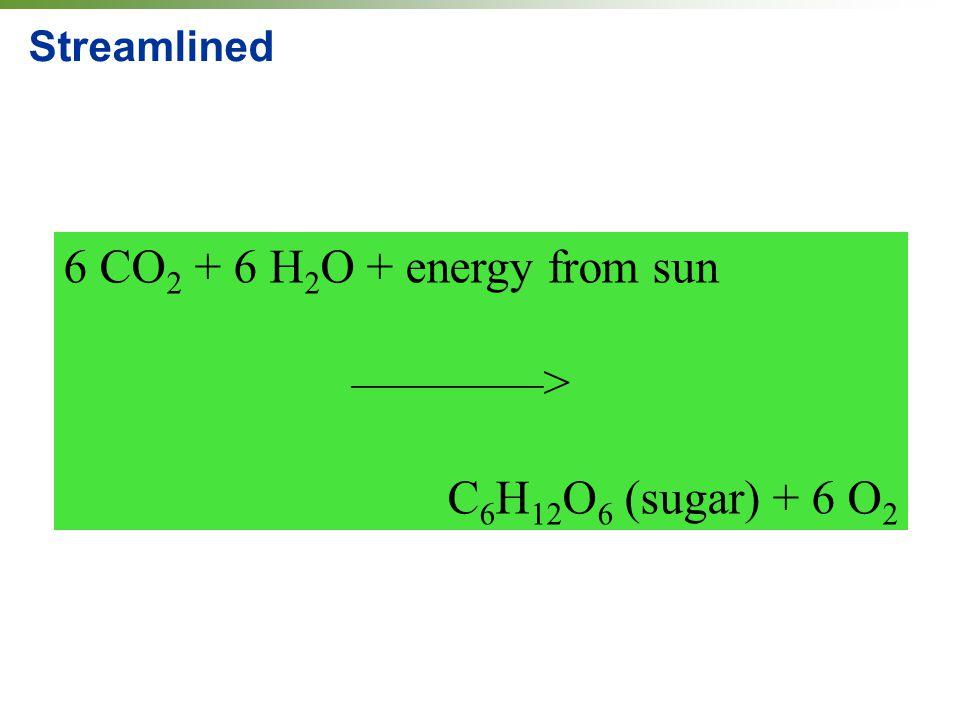 6 CO2 + 6 H2O + energy from sun ————> C6H12O6 (sugar) + 6 O2