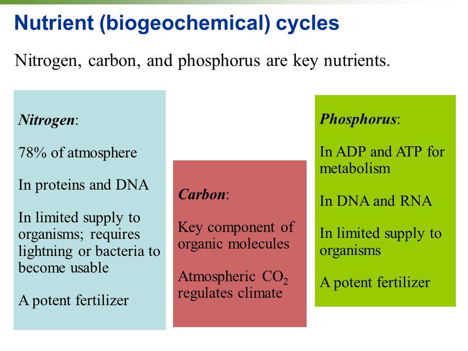 Nutrient (biogeochemical) cycles