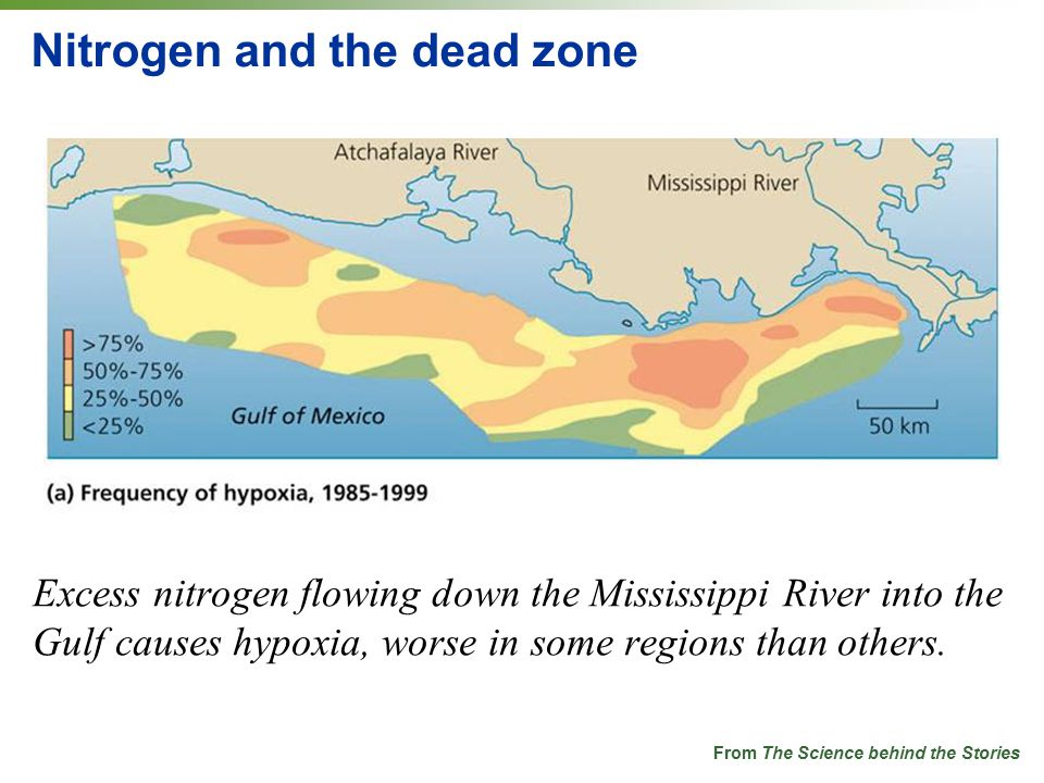 Nitrogen and the dead zone