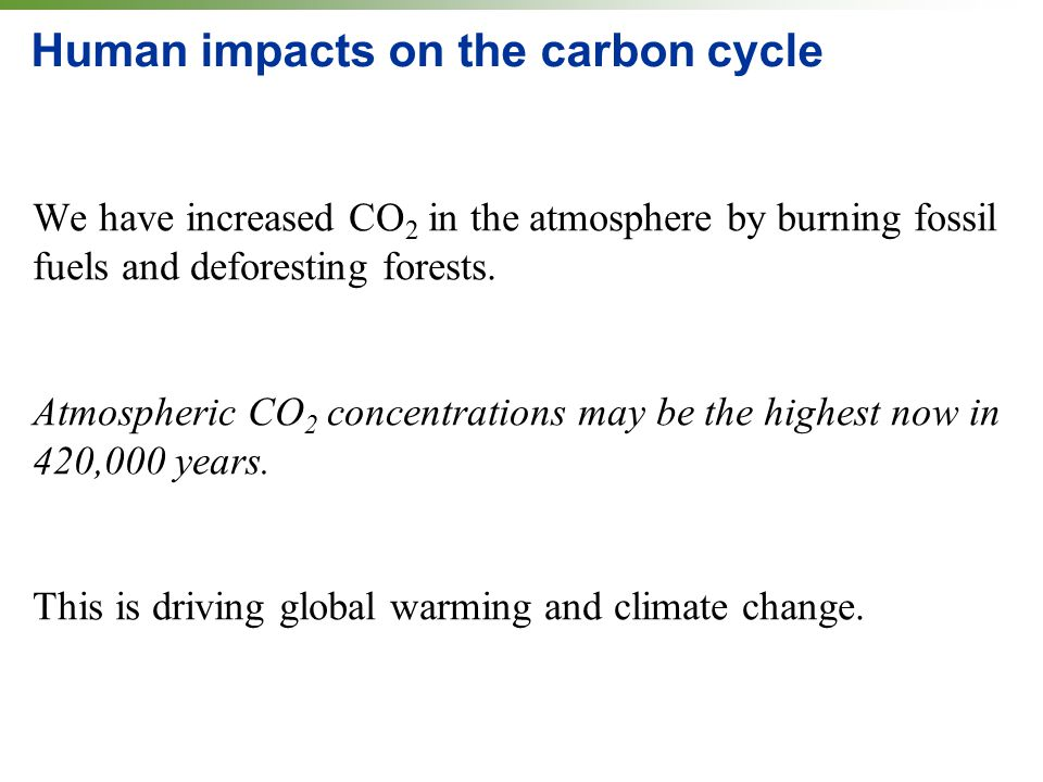 Human impacts on the carbon cycle