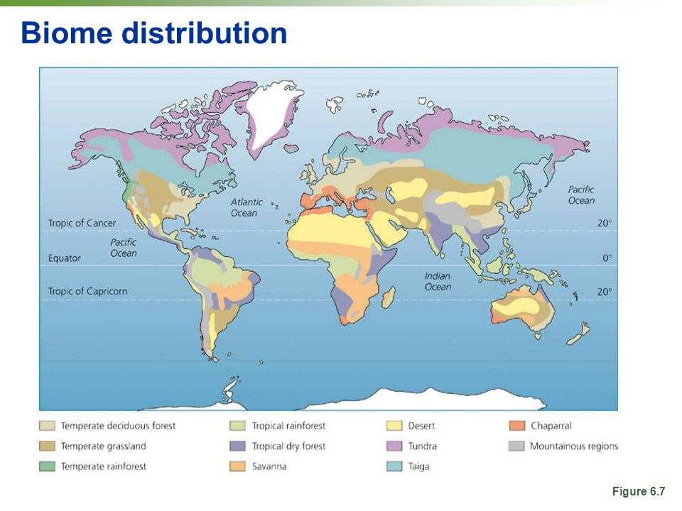Biome distribution Figure 6.7