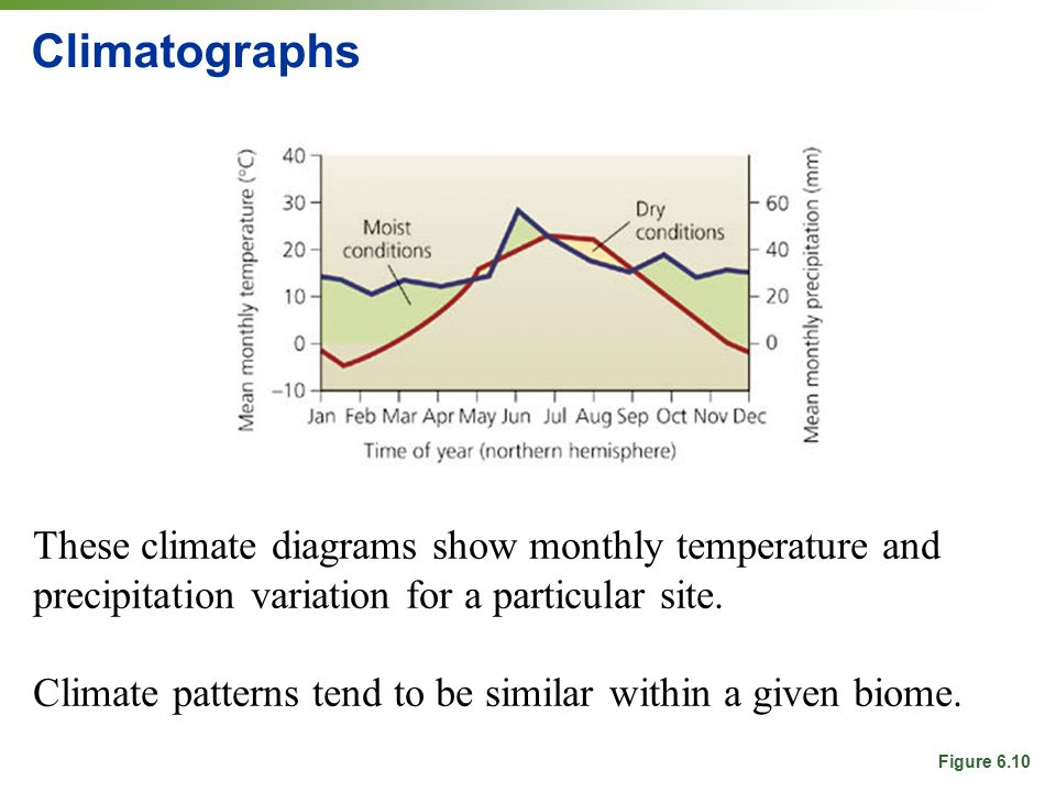 Climatographs These climate diagrams show monthly temperature and precipitation variation for a particular site.