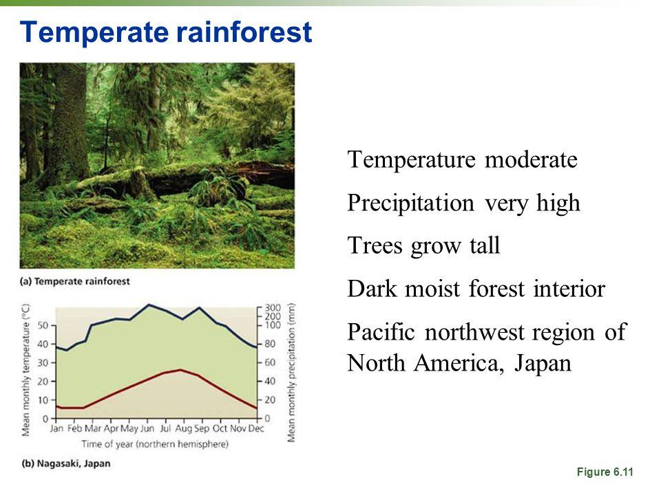 Temperate rainforest Temperature moderate Precipitation very high