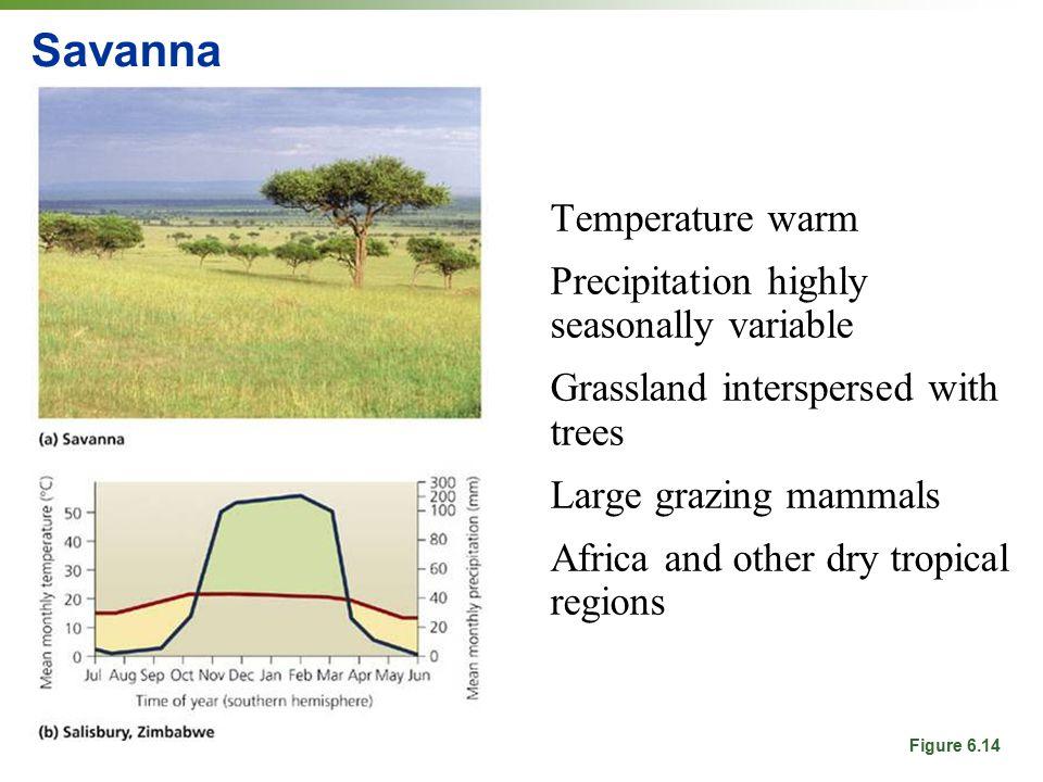 Savanna Temperature warm Precipitation highly seasonally variable