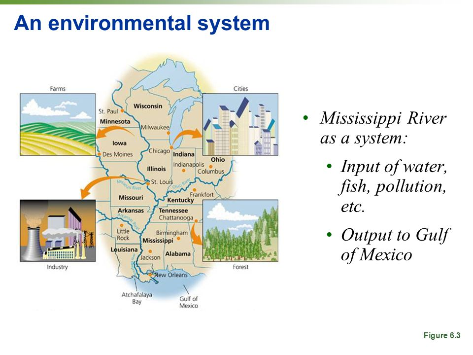 environmental systems This page takes you though the basic steps (plan, do, check, act) of building an environmental management system (ems) as they are outlined in the 2001 second edition of environmental management systems: an implementation guide.