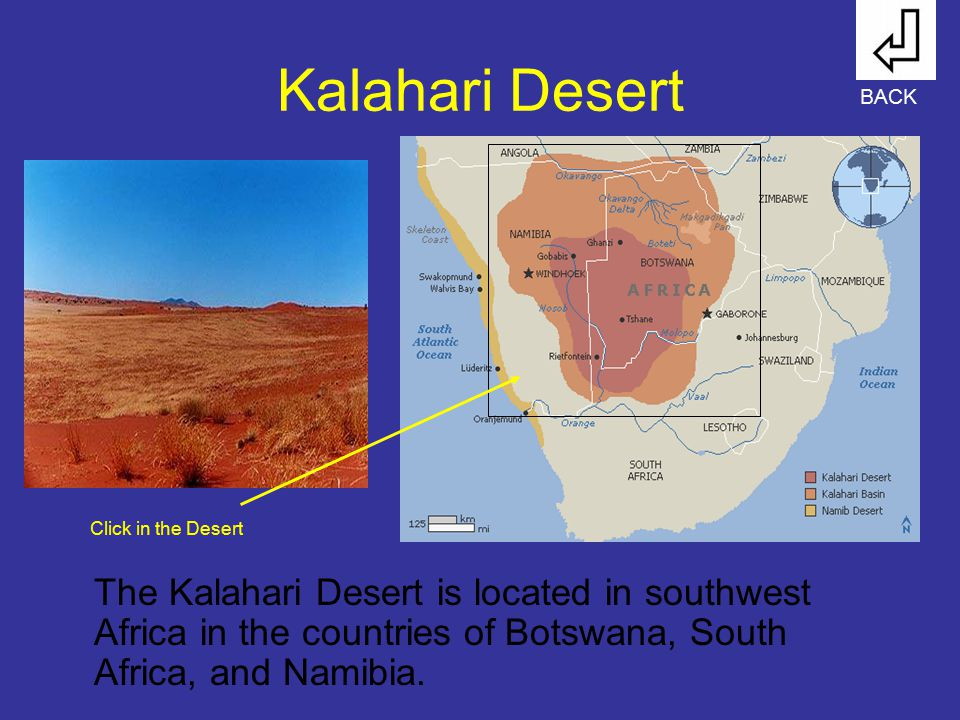 Kalahari Desert BACK. Click in the Desert.