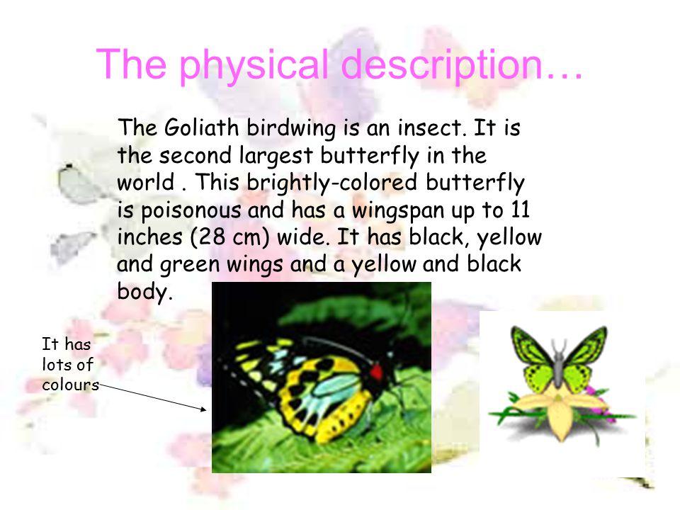 The physical description…