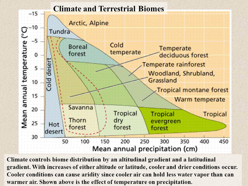 Climate and Terrestrial Biomes