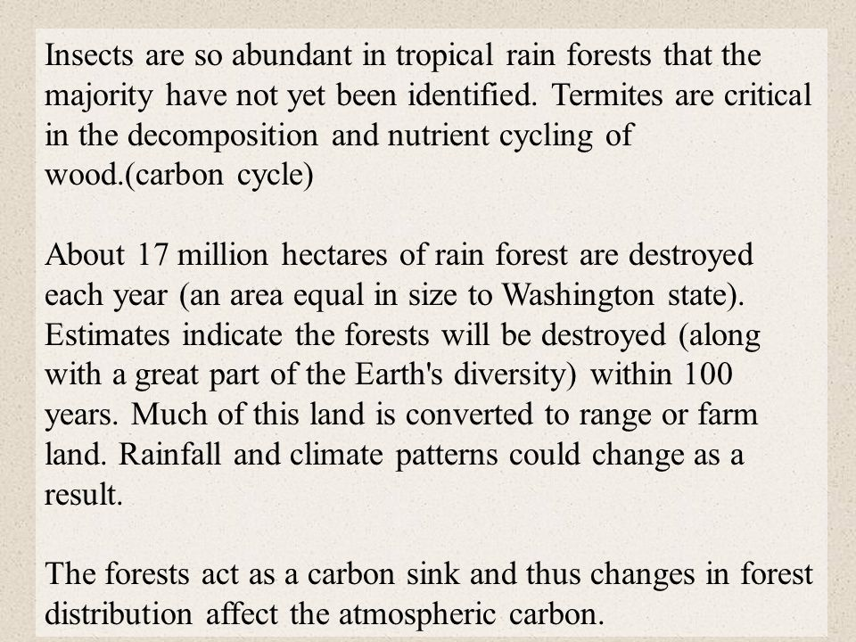 Insects are so abundant in tropical rain forests that the majority have not yet been identified. Termites are critical in the decomposition and nutrient cycling of wood.(carbon cycle)