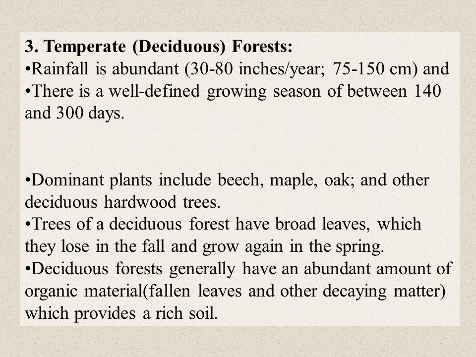 3. Temperate (Deciduous) Forests: