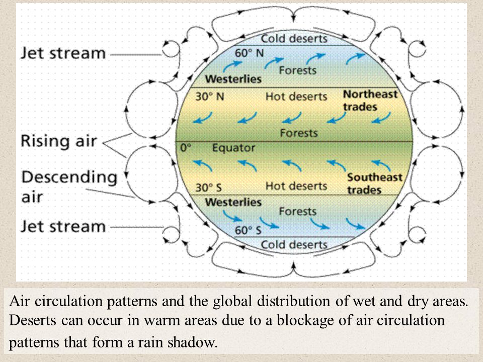 Air circulation patterns and the global distribution of wet and dry areas.