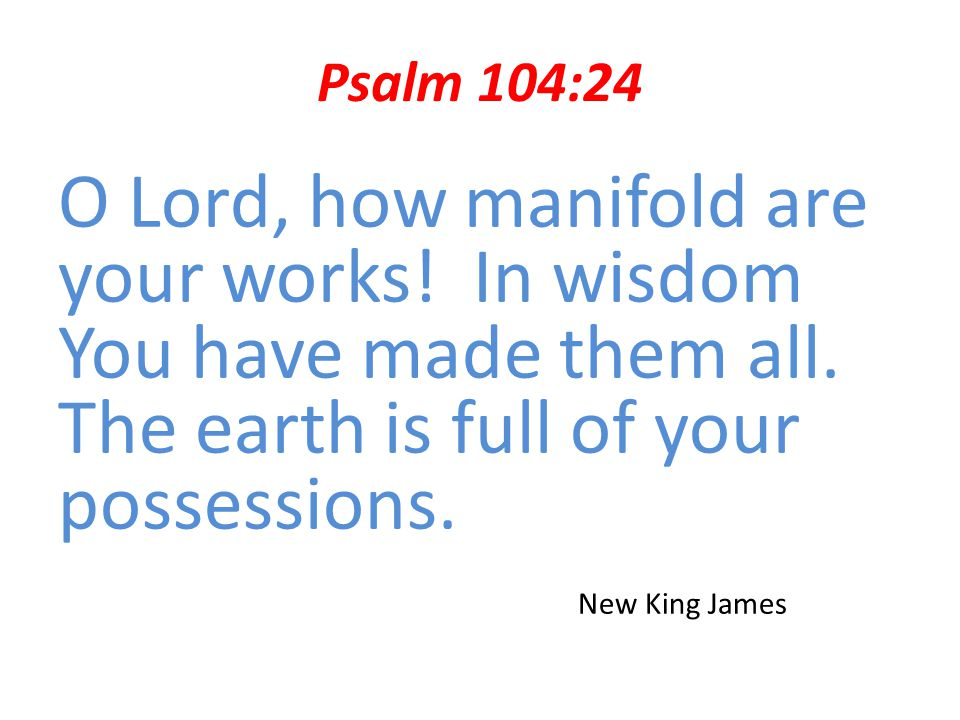 Psalm 104:24 O Lord, how manifold are your works! In wisdom You have made them all. The earth is full of your possessions.