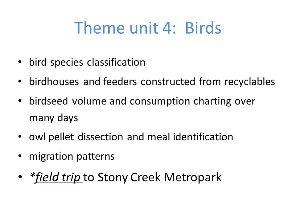 Theme unit 4: Birds *field trip to Stony Creek Metropark