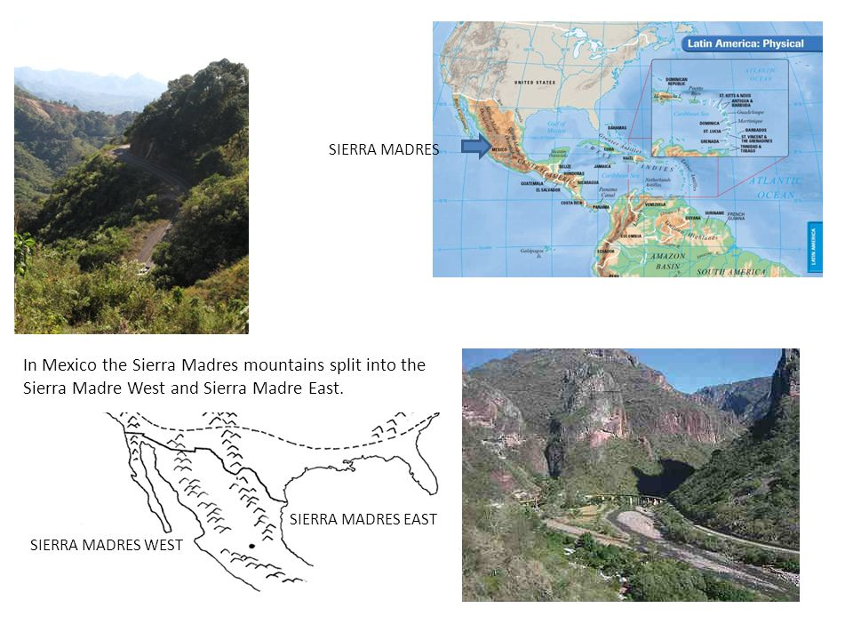 SIERRA MADRES In Mexico the Sierra Madres mountains split into the Sierra Madre West and Sierra Madre East.
