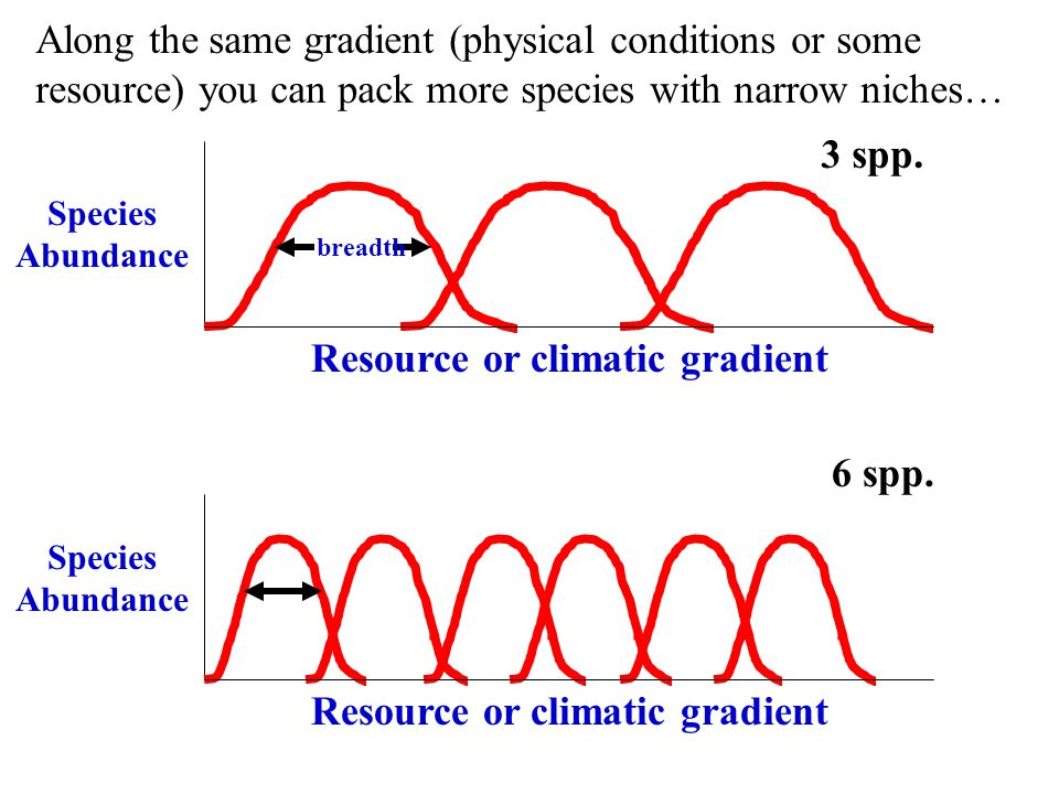 Resource or climatic gradient