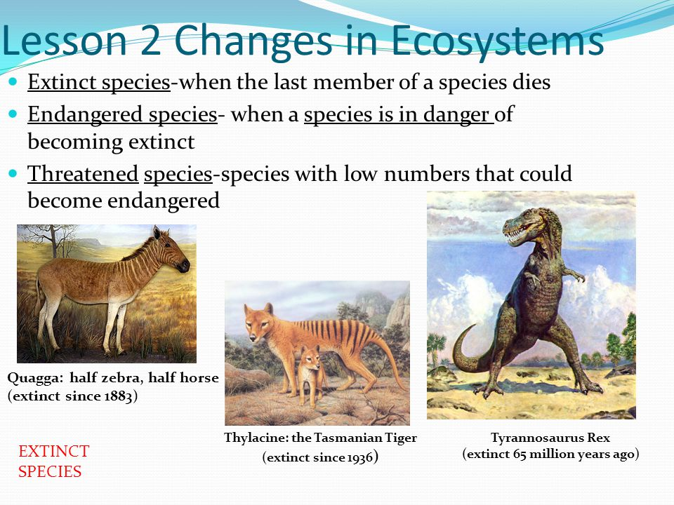 Lesson 2 Changes in Ecosystems