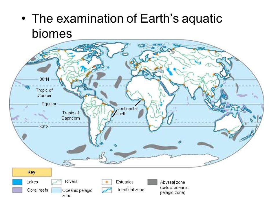 The examination of Earth's aquatic biomes
