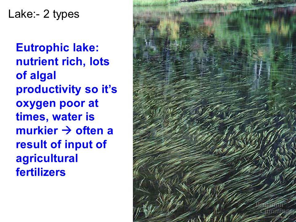 Lake:- 2 types