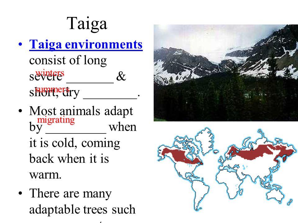 Taiga Taiga environments consist of long severe _______ & short, dry ________.