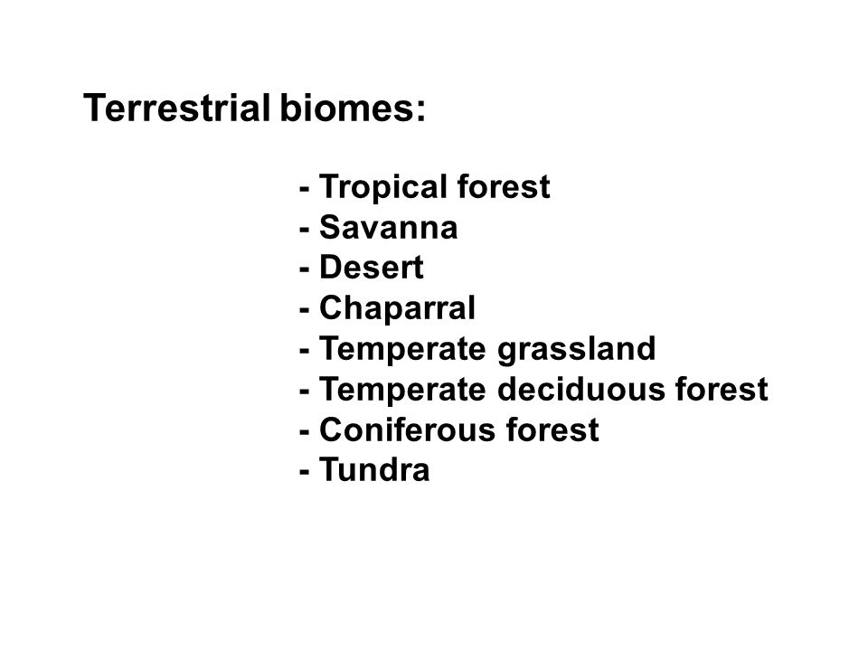 - Temperate deciduous forest - Coniferous forest - Tundra