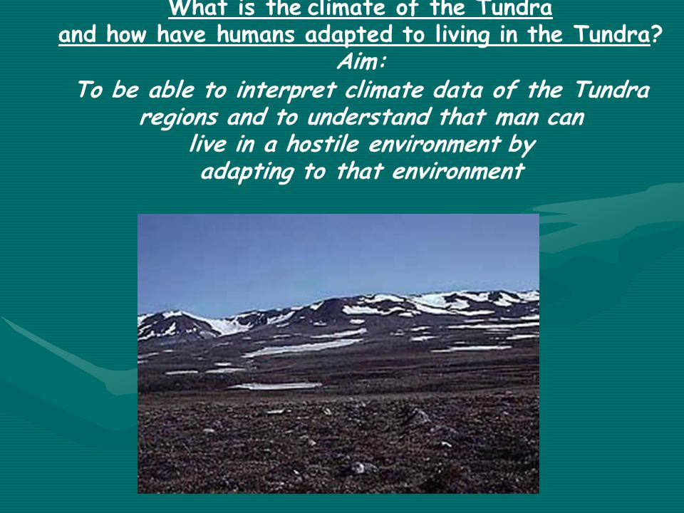 What is the climate of the Tundra