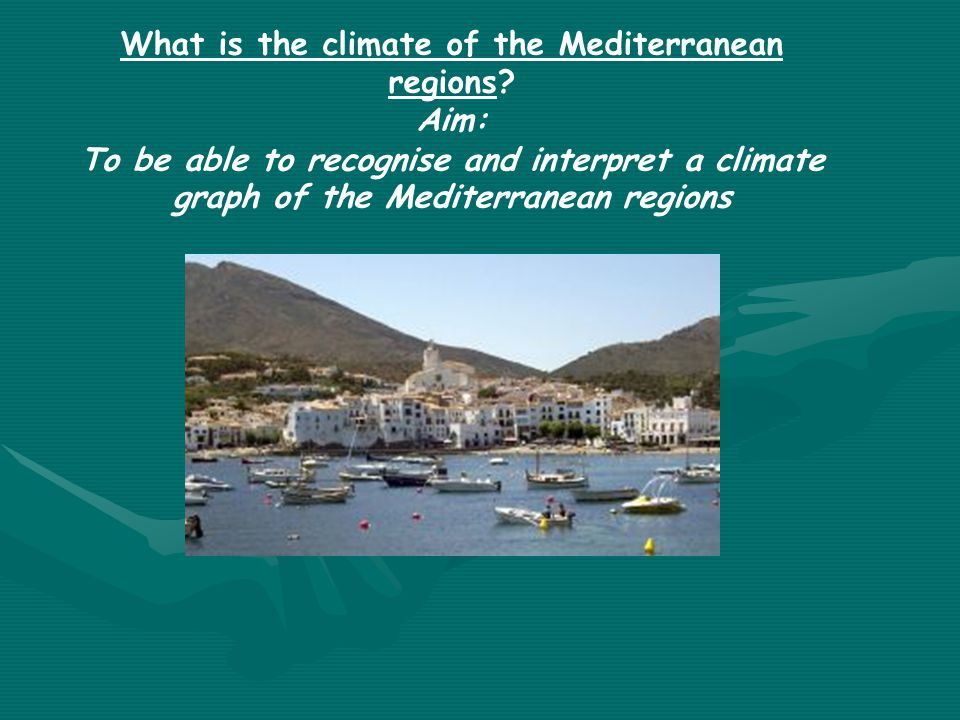 What is the climate of the Mediterranean regions