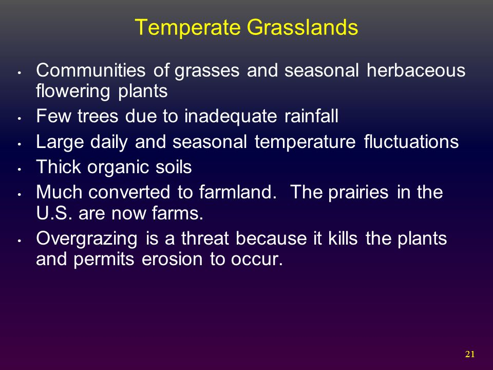 Temperate Grasslands Communities of grasses and seasonal herbaceous flowering plants. Few trees due to inadequate rainfall.