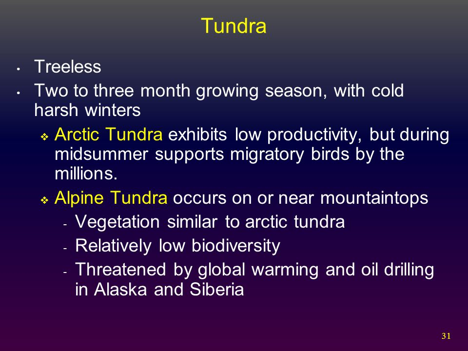 Tundra Treeless. Two to three month growing season, with cold harsh winters.
