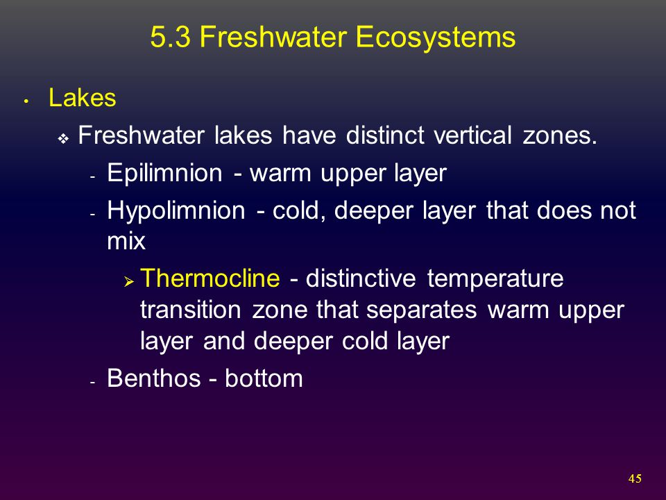 5.3 Freshwater Ecosystems