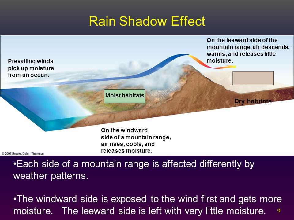 Rain Shadow Effect On the leeward side of the mountain range, air descends, warms, and releases little moisture.
