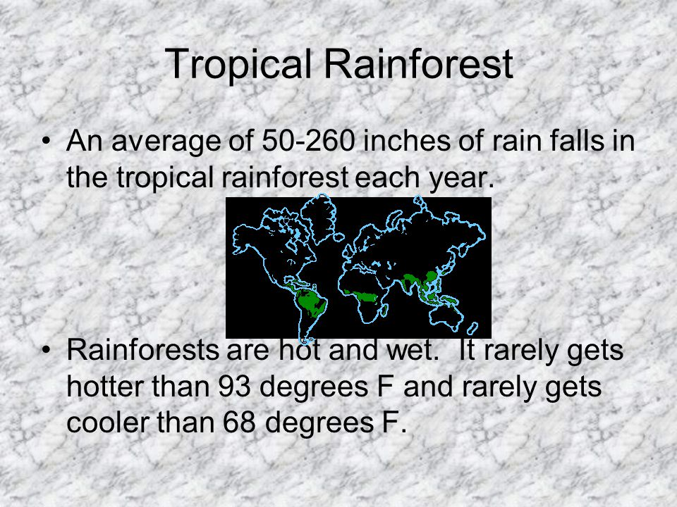 Tropical Rainforest An average of 50-260 inches of rain falls in the tropical rainforest each year.
