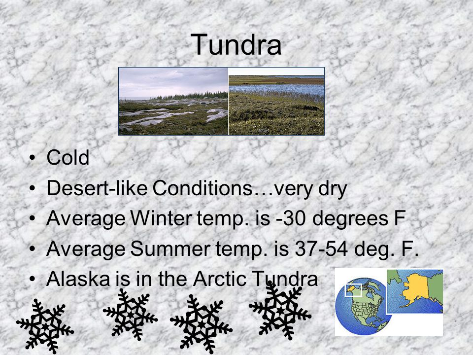 Tundra Cold Desert-like Conditions…very dry