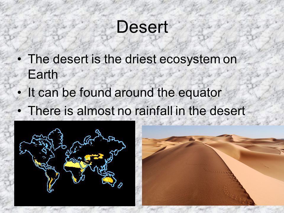 Desert The desert is the driest ecosystem on Earth