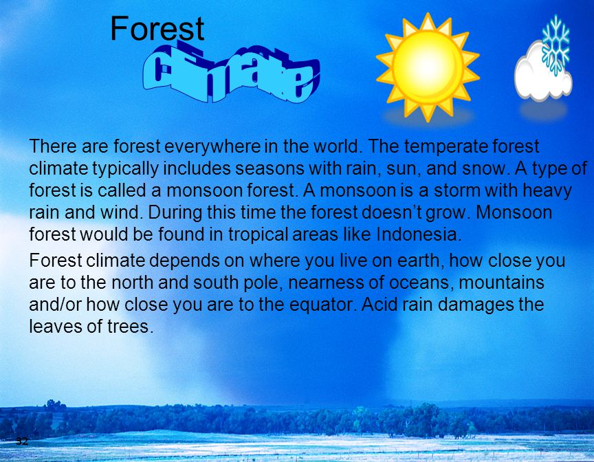 Forest climate.