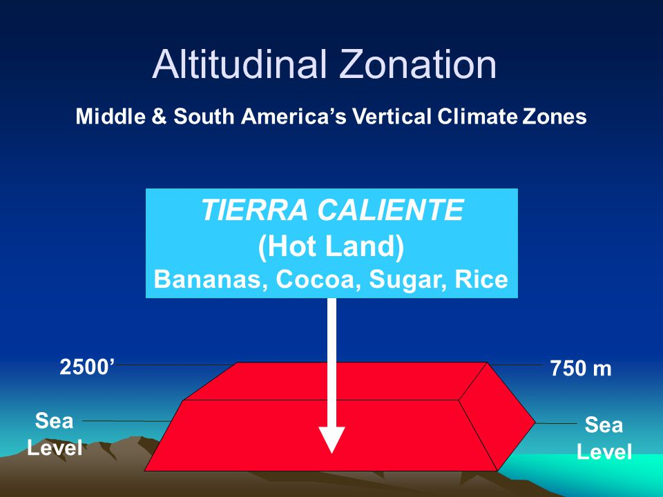 Altitudinal Zonation TIERRA CALIENTE (Hot Land)