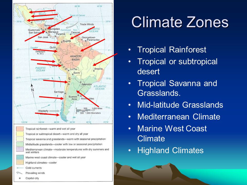 Climate Zones Tropical Rainforest Tropical or subtropical desert