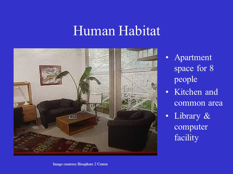 Human Habitat Apartment space for 8 people Kitchen and common area