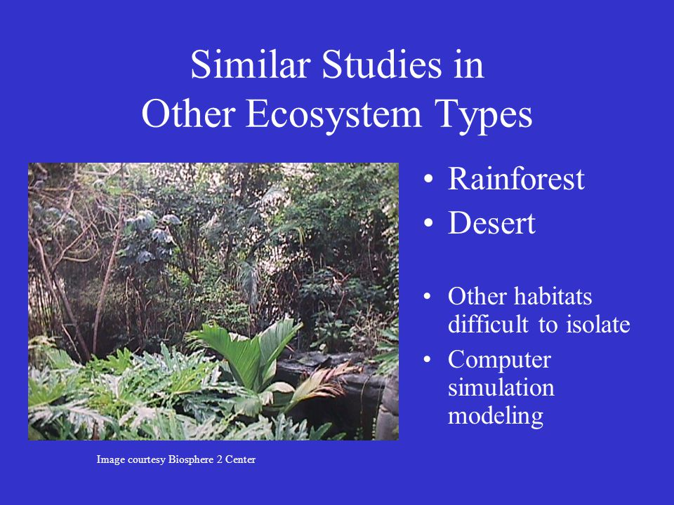 Similar Studies in Other Ecosystem Types