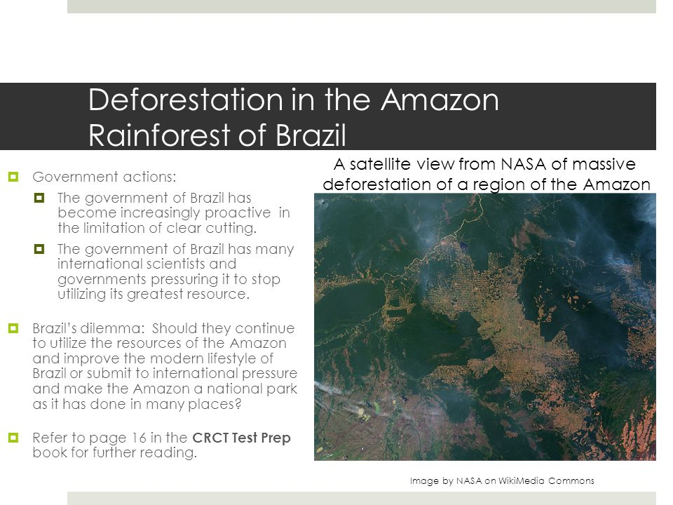 Deforestation in the Amazon Rainforest of Brazil