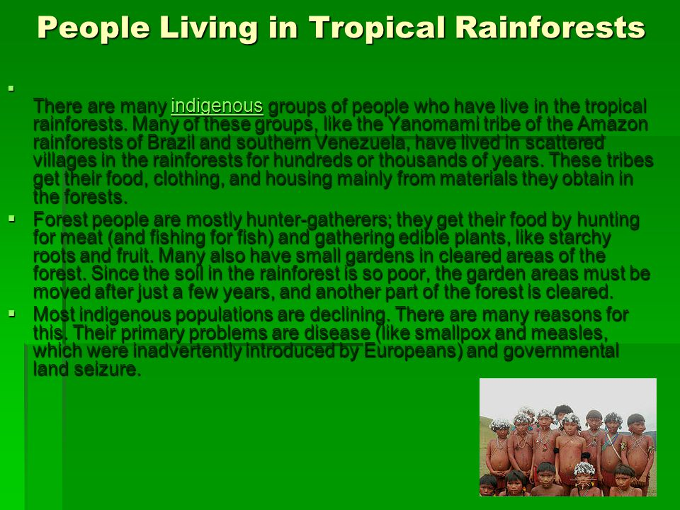 People Living in Tropical Rainforests