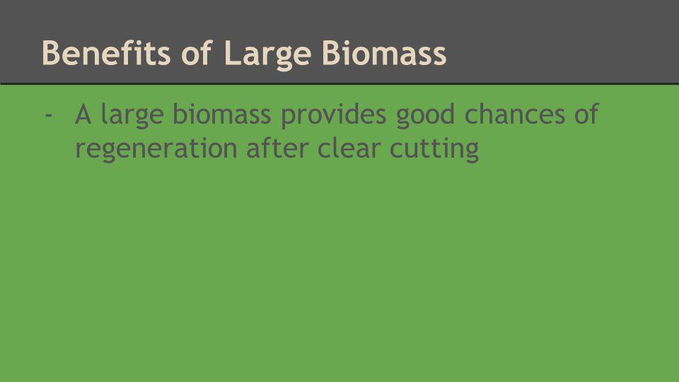 Benefits of Large Biomass