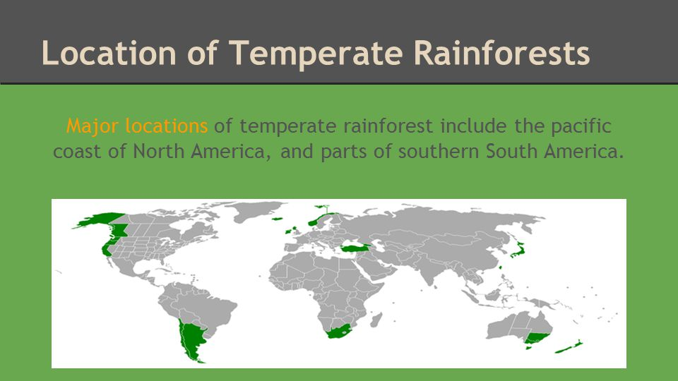 Location of Temperate Rainforests