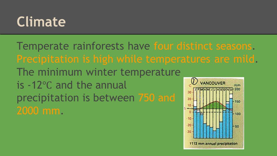 Climate Temperate rainforests have four distinct seasons. Precipitation is high while temperatures are mild. The minimum winter temperature.