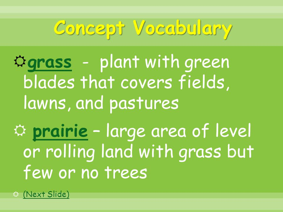 Concept Vocabulary grass - plant with green blades that covers fields, lawns, and pastures.