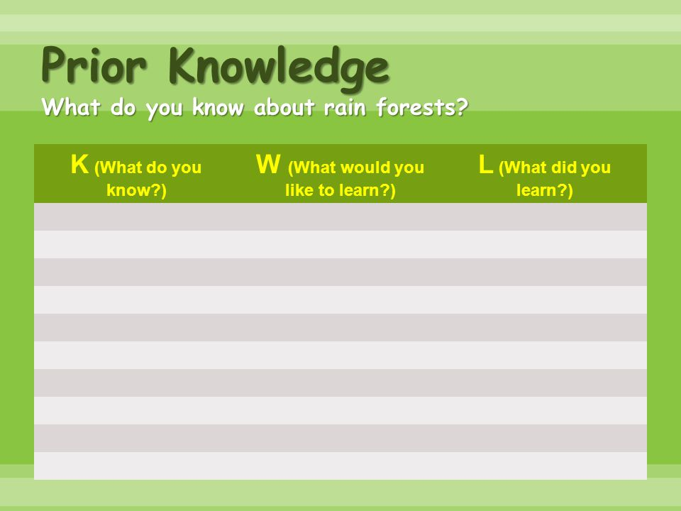 Prior Knowledge What do you know about rain forests