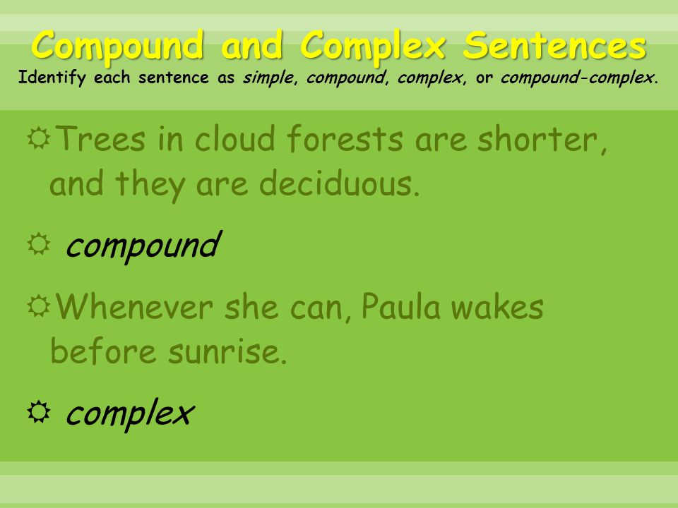 Compound and Complex Sentences Identify each sentence as simple, compound, complex, or compound-complex.