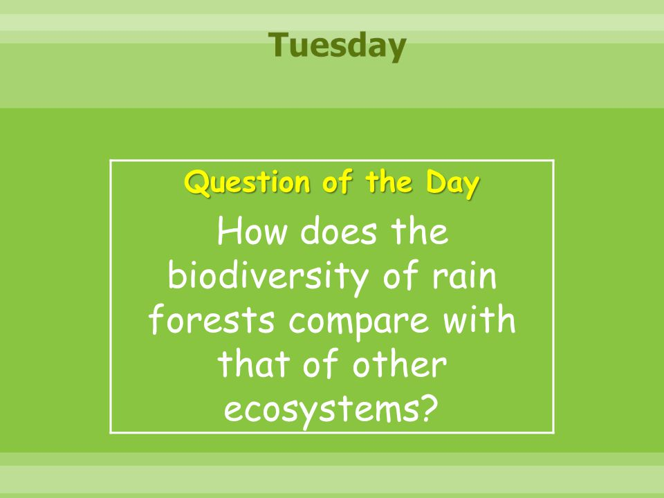 Tuesday Question of the Day.