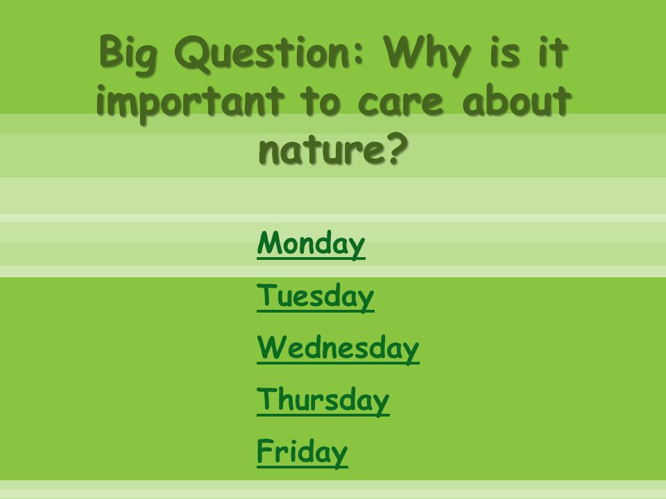 Big Question: Why is it important to care about nature